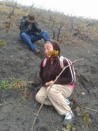 Fogo (Capo Verde), la disperazione dei contadini della caldera del vulcano - 9/30