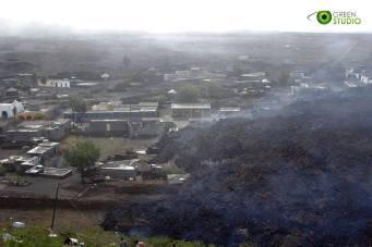 Fogo (Capo Verde), novembre-dicembre 2014 - 10/32