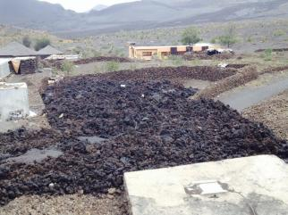 Fogo (Capo Verde), la colata lavica va raffreddandosi: alcune immagini dal villaggio distrutto - 25/30